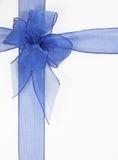 blå bow Arkivbild