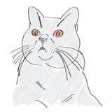 blå brittisk katt tecknad hand royaltyfri illustrationer