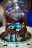 Blå chokladkaka Fotografering för Bildbyråer