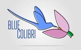 Blå colibrilogo enkel plan färgillustration av att landa fågeln vektor illustrationer
