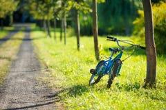 Blå cykel som lutas mot ett träd Fotografering för Bildbyråer