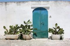 Blå dörr Royaltyfri Foto