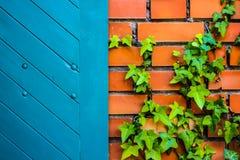 Blå dörr- och tegelstenvägg arkivfoto