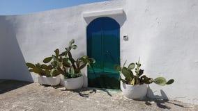 Blå dörr och växt Royaltyfri Bild