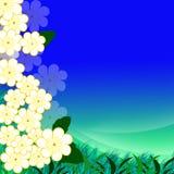 Blå design med utrymme för text Royaltyfria Foton