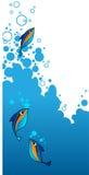 blå designram för aqua Arkivfoto