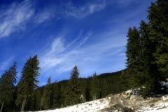 blå djup sky Royaltyfri Fotografi
