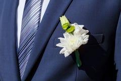 Blå dräkt- och brudgumboutonniere av vita krysantemum Arkivfoto