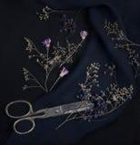 Blå druva, torkad flora och sax Arkivbilder