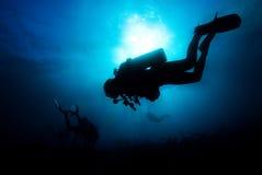 blå dykning Arkivfoto