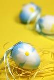 blå easter äggblomma Royaltyfria Foton