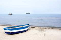 Blå eka på stranden royaltyfri bild