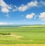 blå fältgreensky Royaltyfri Foto