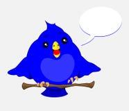 Blå fågel Royaltyfri Foto