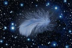 blå fallande fjäder Royaltyfri Fotografi