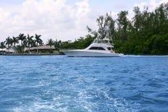 blå fartygfiskeflorida waterway Arkivbilder