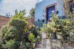 Blå fasad av ett hus med många växtblommor och ett träd royaltyfri foto