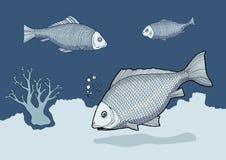 Blå fisk   stock illustrationer