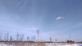 blå fjäder för sky för fältgräsgreen Royaltyfri Bild