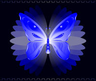 blå fjäril vektor illustrationer