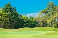 Blå flagga i grönt gräs för golfbana royaltyfria bilder