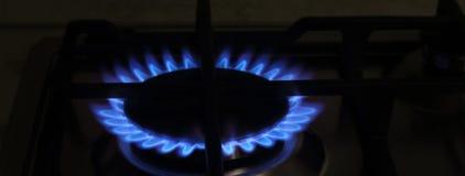 Blå flamma på gasspisen Arkivbild