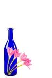 Blå flaska med rosa färgblommor som isoleras på vit bakgrund Arkivbild