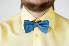 Blå fluga med den gula skjortan Royaltyfri Foto