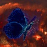 Blå flygafjäril i en ljus turbulent röd himmel royaltyfri foto