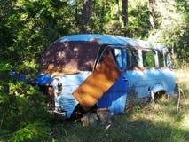 blå gammal skåpbil arkivfoton