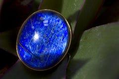 blå gem Royaltyfri Bild