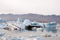 Blå glaciärisJokulsarlon lagun Island Royaltyfri Foto