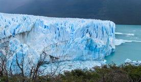 Blå is glaciar Perito Moreno i Patagonia Arkivbild