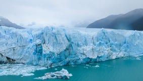 Blå is glaciar Perito Moreno i Patagonia Fotografering för Bildbyråer
