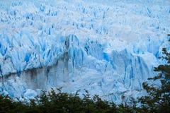 Blå is glaciar Perrito Moreno Royaltyfri Foto