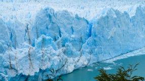 Blå is glaciar Perrito Moreno Royaltyfria Bilder