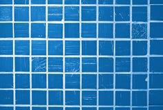 blå glasad tegelplatta Arkivbilder