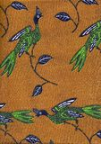 blå green för fåglar royaltyfri fotografi