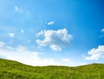 blå greensky för fält 3d Arkivfoton
