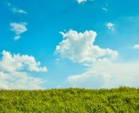 blå greensky för fält 3d Royaltyfria Bilder