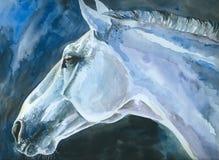 blå häst Arkivfoto