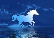 blå hästsilhouette Royaltyfri Bild