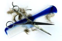 blå hårkamhårsax arkivfoto