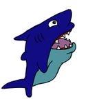 Blå haj Royaltyfri Bild