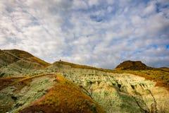 Blå handfat i John Day Fossil Beds Fotografering för Bildbyråer