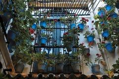 Blå hangin för blomkruka på väggen Fotografering för Bildbyråer
