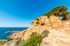 Blå himmel över Costa Paradiso den steniga kusten Royaltyfri Bild