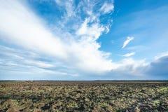 Blå himmel över plöjd fileld i vår Arkivfoton