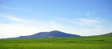 Blå himmel för berg och grönt gräs Fotografering för Bildbyråer