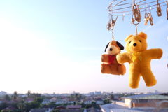 Blå himmel för nallebjörn i morgonen arkivfoton